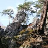 Foto J. Tvrdý